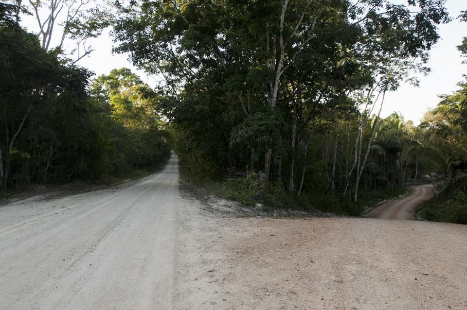 De lado izquierdo, la carretera que conduce a Yaxhá. A la derecha, el camino que lleva a la finca.