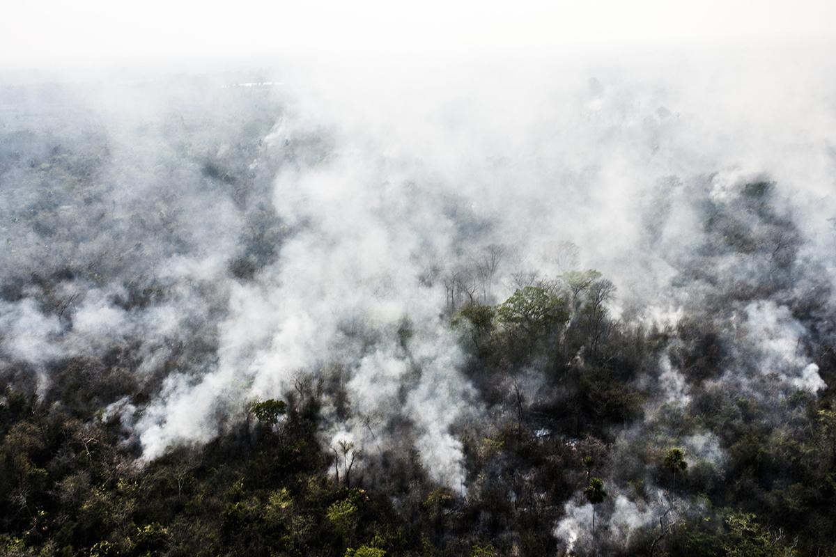 Miles de hectáreas de selva arden cada año en la zona protegida