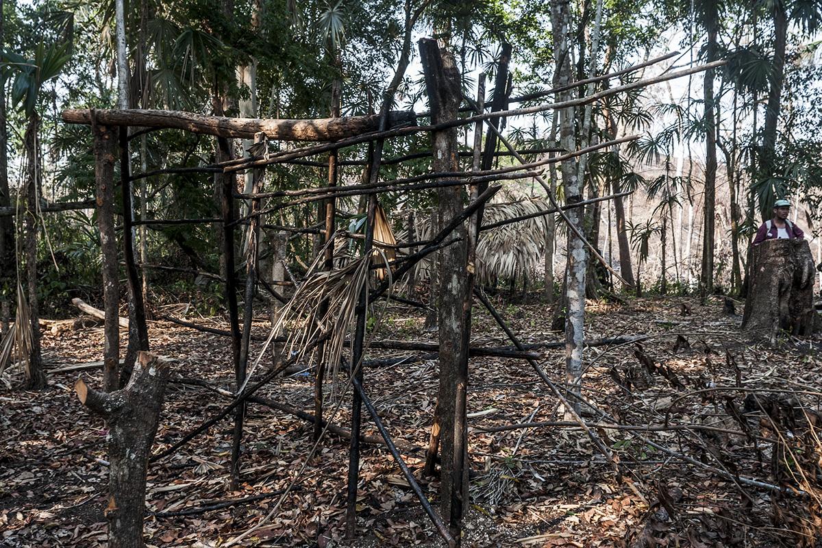 Una de las champas construidas por campesinos de La Mestiza, cerca de El Peruíto, fue quemada por las autoridades