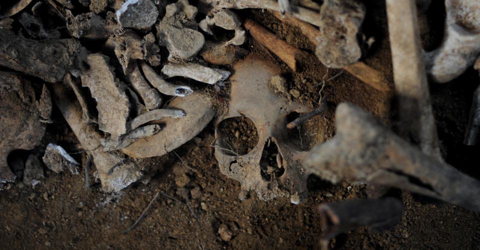 La FAFG ha extraído alrededor de 20 mil osamentas de los osarios de la Verbena.