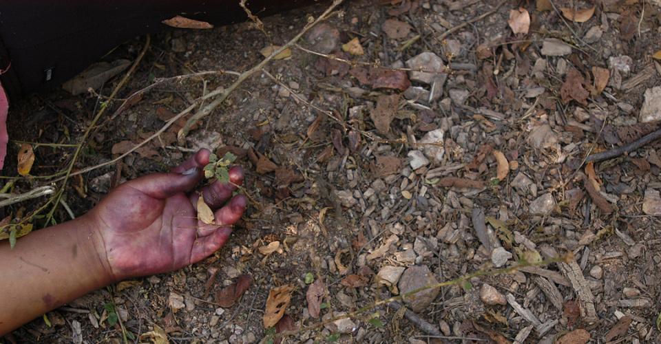 436 cuerpos fueron inhumados como XX este año. 72 eran mujeres. Fotografía de Sandra Sebastián.
